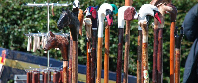 10 Walking Sticks